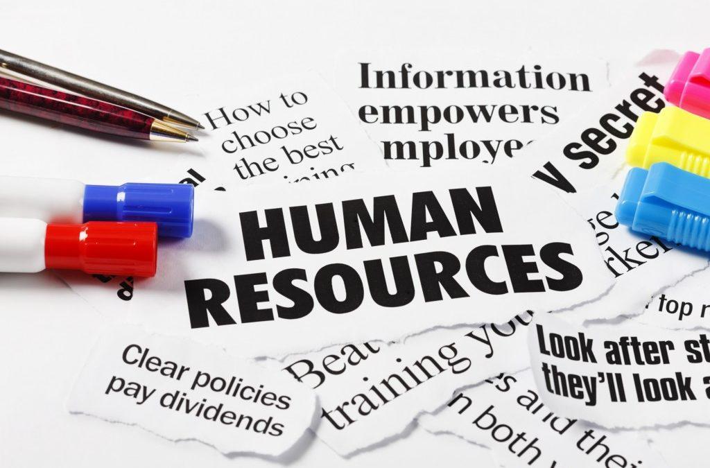 Importanza delle risorse umane in azienda