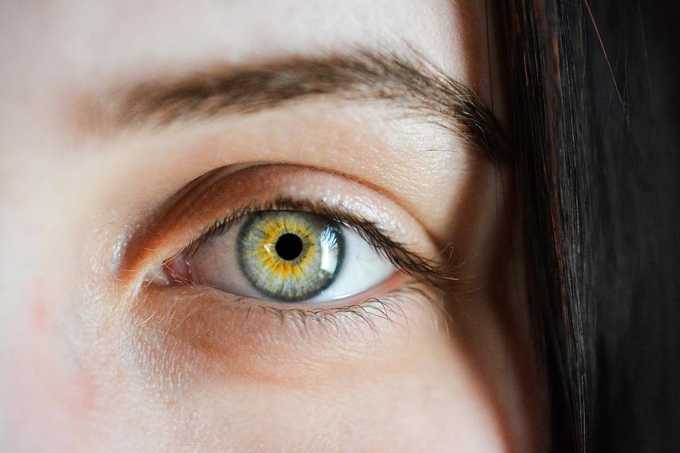 Evoluzione e protezione dei nostri occhi